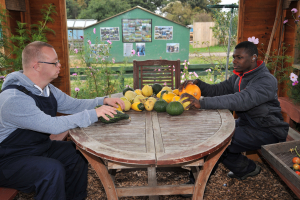 Trainees working at the allotments